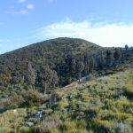 Il monte Castellare