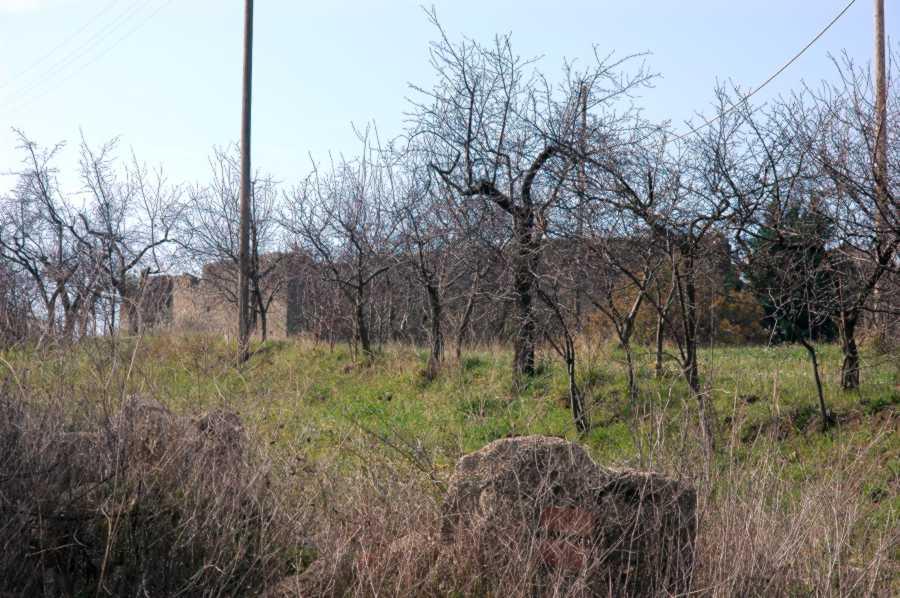 Le mura del Borghetto